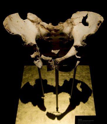 Se pueden hallar en Atapuerca homínidos incluso anteriores al primer europeo