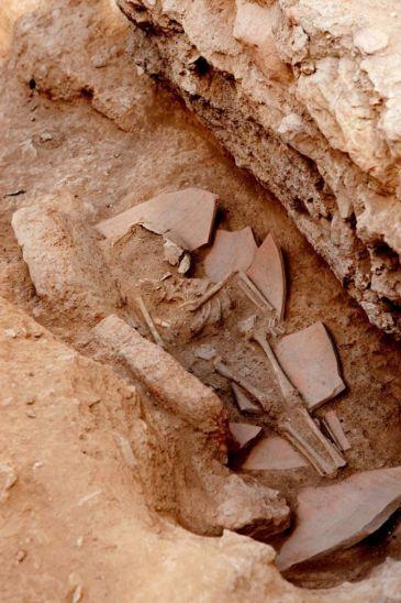 Hallados los restos de un menor en la villa romana del Albir, en Alfaz del Pi (Alicante)