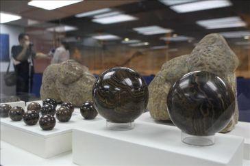 La comercialización ilegal de fósiles destruye un patrimonio poco estudiado en Perú