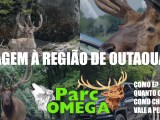 Imagem mostrando vários animais, principalmente cervos, no Parque Ômega. Alguns estão próximos a carros.