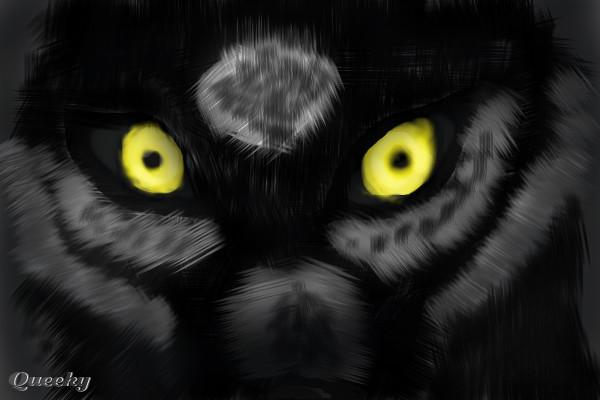 Dark Wolf A Fan Art Speedpaint Drawing By Blackblaze