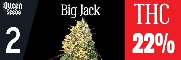 cannabis big jack depression