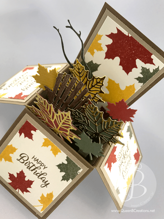 Fall/Autumn theme birthday card in a box made using the woodland embossing folder and the Colorful Seasons stamp set with the coordinating Seasonal Layers Thinlit dies by Queen B Creations