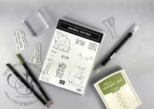 Stampin' Up! Animal Outing stamp set from new 2018-2019 annual catalog handmade baby card by Lisa Ann Bernard of Queen B Creations