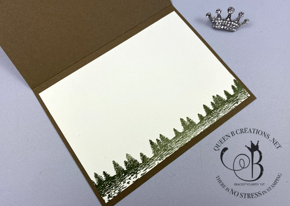 Stampin' Up! Mountain Air / Petal to the Metal masculine card by Lisa Ann Bernard of Queen B Creations