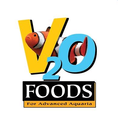 V2O logo