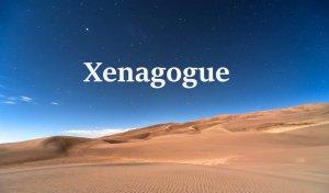 Xenagogue2