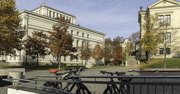 martin luther universität halle wittenberg # 62