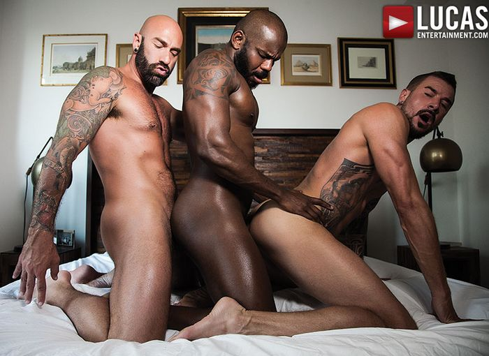 Rod Beckmann Drew Sebastian Dolf Dietrich Interracial Gay Porn Bareback Sex