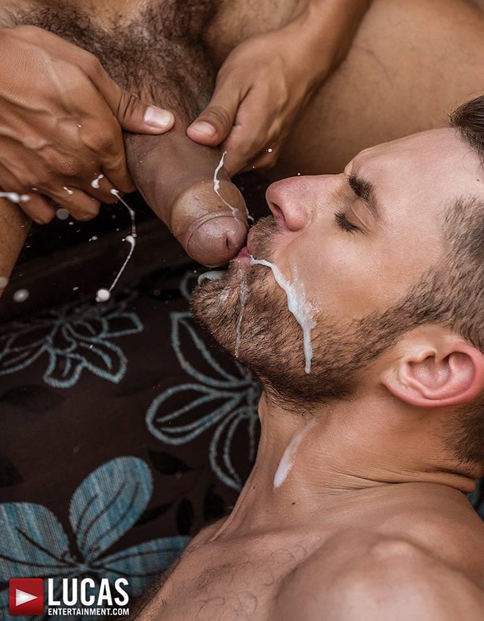 gay tube male castel