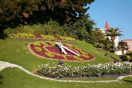 Recambio de flores en Viña de Mar para remozar parques y jardines