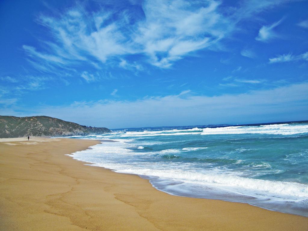 Tunquén: un bello escenario que combina playa y un humedal