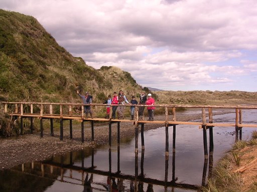 Parque Ahuenco: Una hermosa reserva privada que busca proteger la flora y fauna de Chiloé