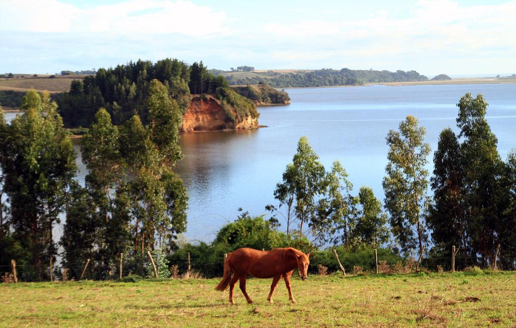 Lago Budi: Turismo étnico y cultural en la Araucanía