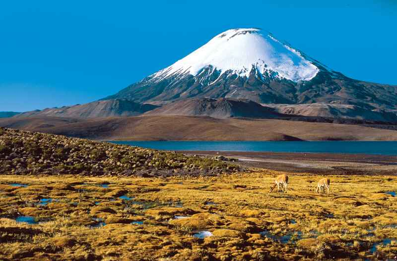 Conoce lo mejor del Volcán Ojos del Salado: maravilloso destino que atrae turistas de todo el mundo