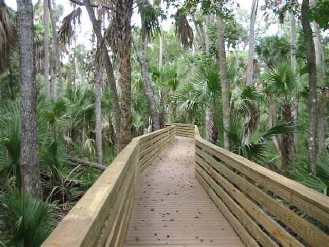 Senderos de caminata en el parque Black Hammock Wilderness Area en Florida Central