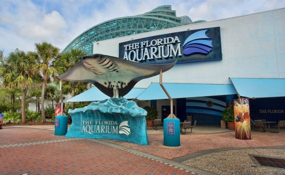The Florida Aquarium Tampa