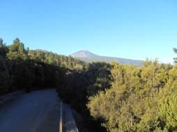 Vue de la TF-21 sur le Teide
