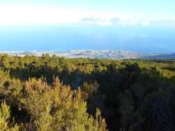 Vue sur Puerto de la Cruz