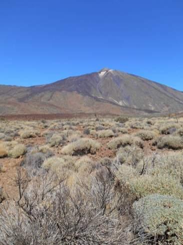 Pic du Teide vu des Roques de Garcia