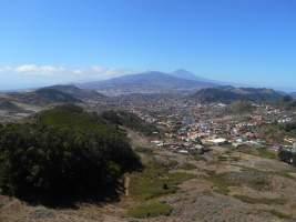 Foret d'Anaga - vue sur le Teide