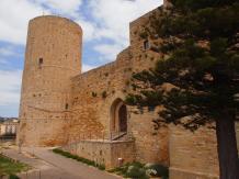 Château de Salemi