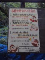 Parc Iwatayama / Quartier d'Arashiyama (Kyoto)