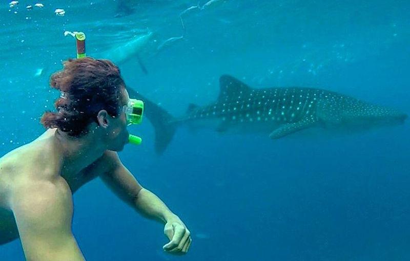 Travel Tomtom: Snapchat de viajes