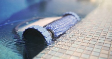 Aspirateur piscine Dolphin : Avis aspirateur robot de piscine Dolphin