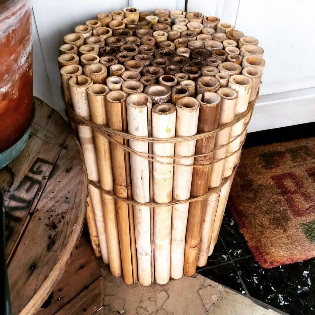 Riciclo Creativo Utilizzare Canne Di Bamb Quello