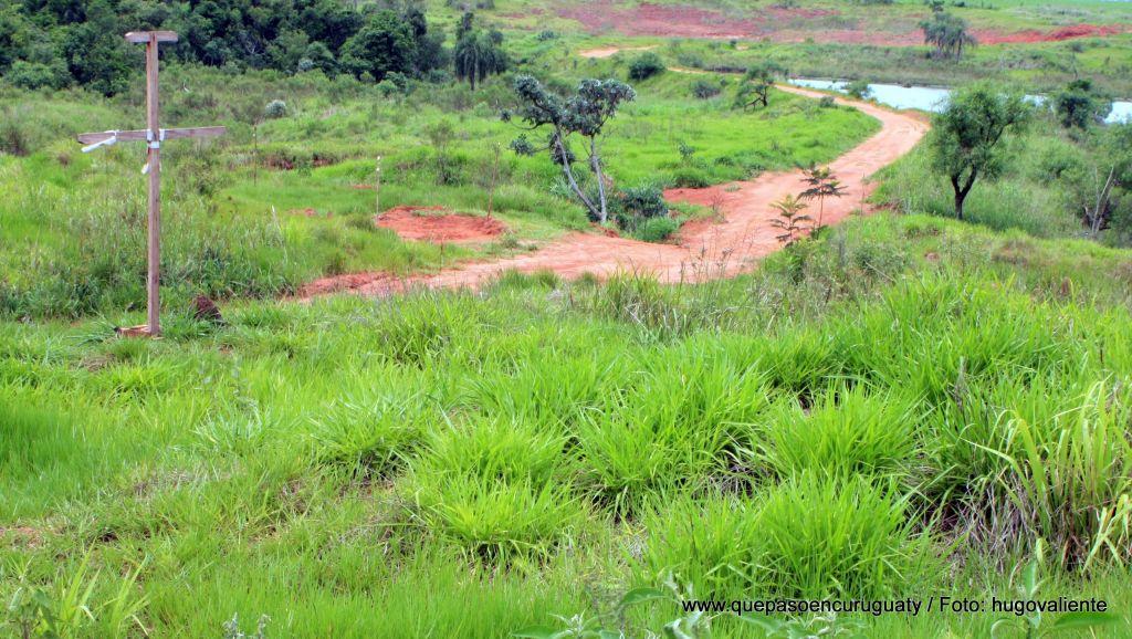 Vista desde campamento campesino hacia las tierras de Marina kue. Noviembre de 2012, Curuguaty.