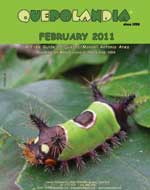 cover-feb-11