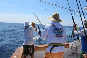 Fish friend Ollie Bass working a sailfish