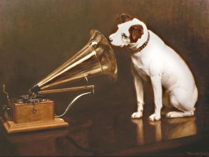 Dog listening to a gramaphone