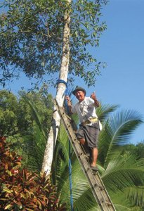 Lenin Rosales, part of the KSTR team, in 2002 putting up a bridge.  He shimmied up the trees for KSTR!