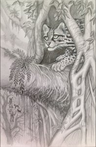 Ocelot drawing