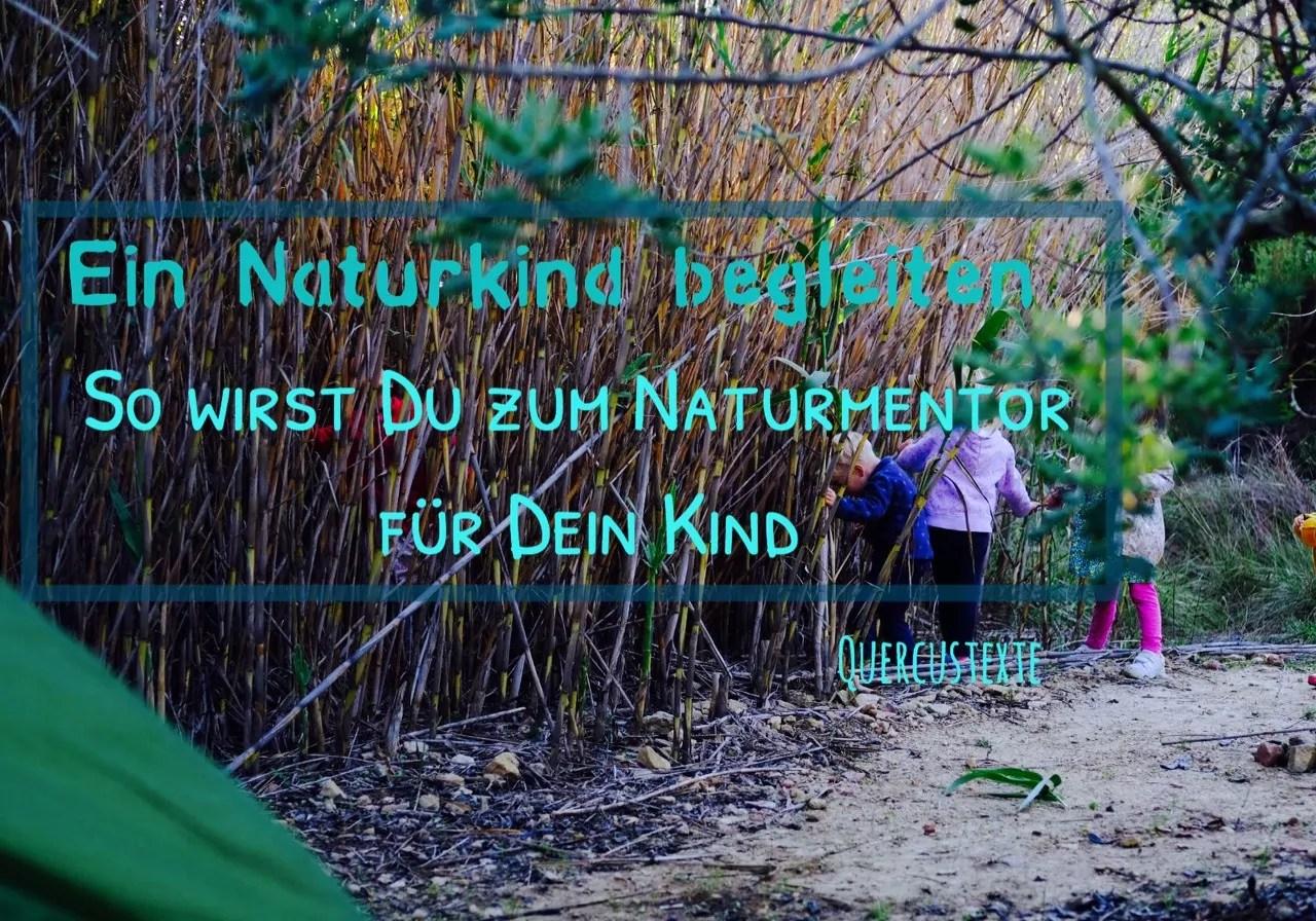 Ein Naturkind begleiten – so wirst du zum Naturmentor für dein Kind