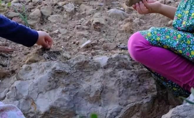 Für wilde und für vorsichtige Kinder: Natur ist für jeden da