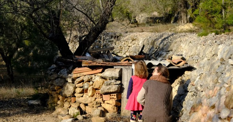 Draußen spielen statt Schule: Kooperative Naturspiele für die Frischluftpause im ungewohnten Alltag