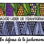 Actúa hoy para mantener Ecuador libre de transgénicos