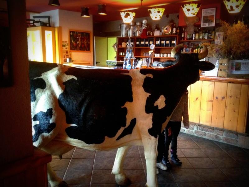 21-la formatgeria de Llívia restaurantes cerdanya que se cuece en bcn planes barcelona (39)