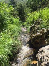 Asturias naturaleza Arenas de Cabrales