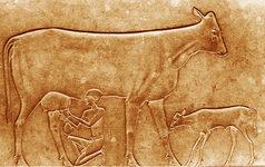 Grabado el queso en el Antiguo Egipto