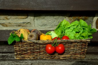 corps,repas,aliment,manger,chrononutrition,pleine conscience,bien manger