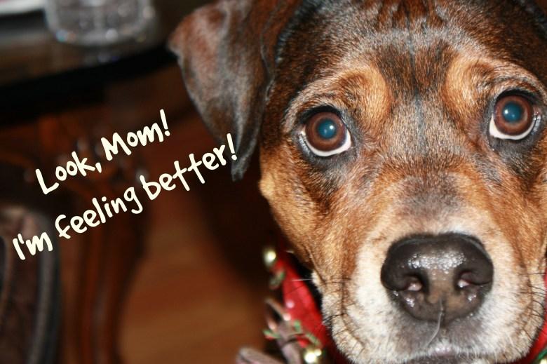 Look Mom! #WalgreensRX #shop