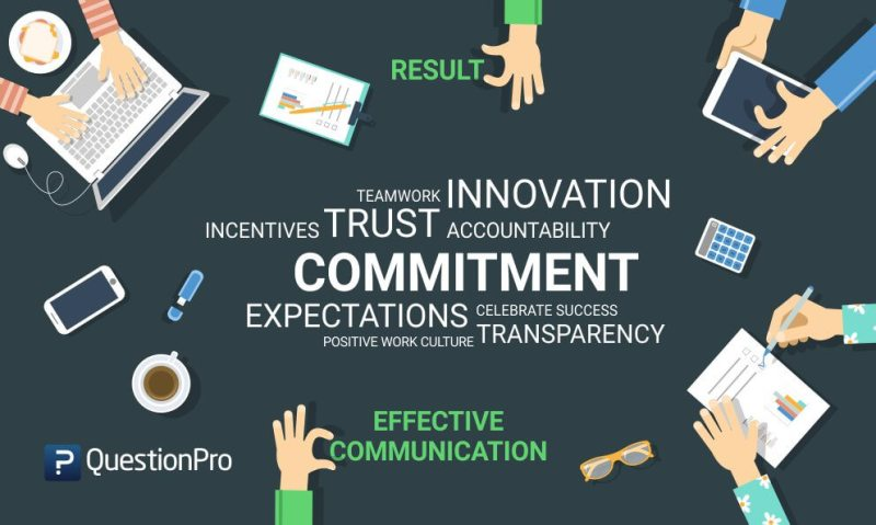 Commitment to work: Definition, importance and tips to improve work commitment
