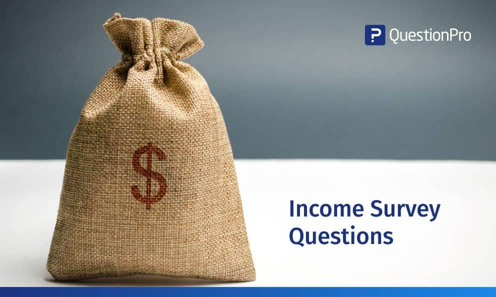Income Survey Questions