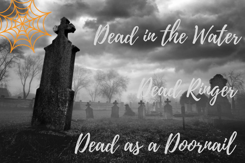 24 Dead Idioms Dead Ringer Dead In The Water And More