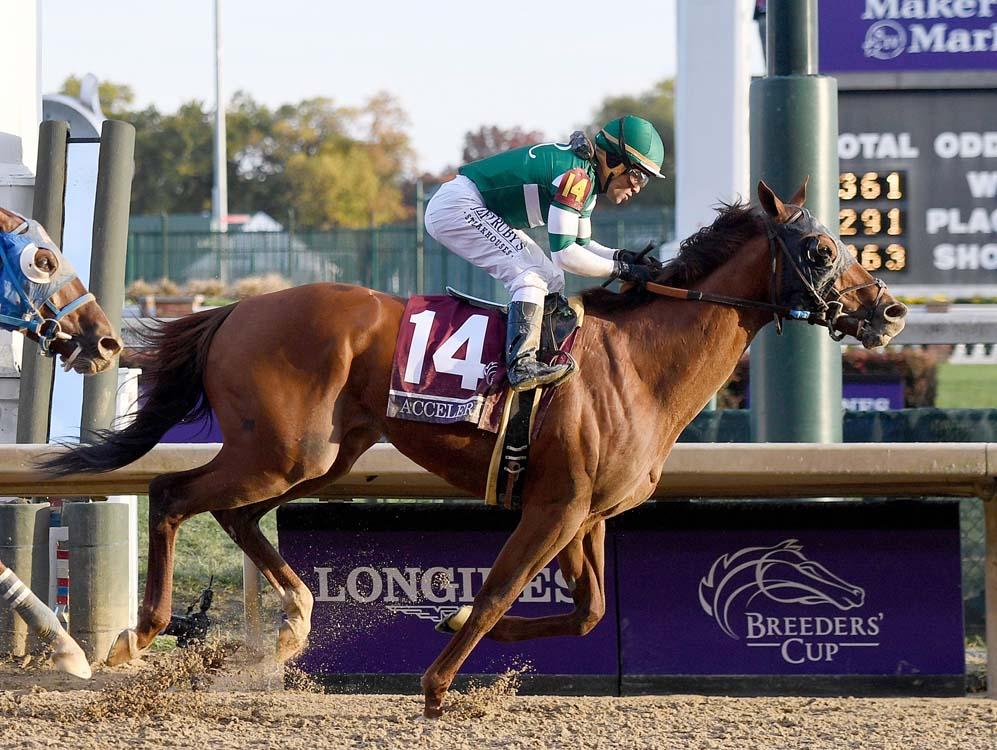 Accelerate with jockey Joel Rosario