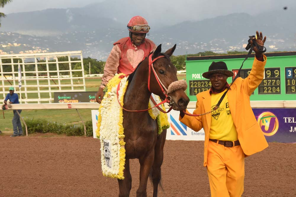 Groom Lewisito DaCosta raises his hand in triumph after She's A Maneater won last year's Diamond Mile